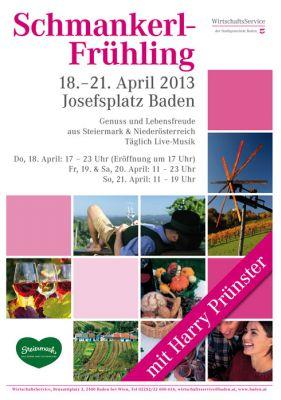 www.baden-baden.de/online-anhoerung/